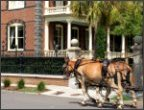 Charleston Carriage